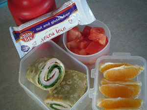 gluten free dairy free wrap lunch