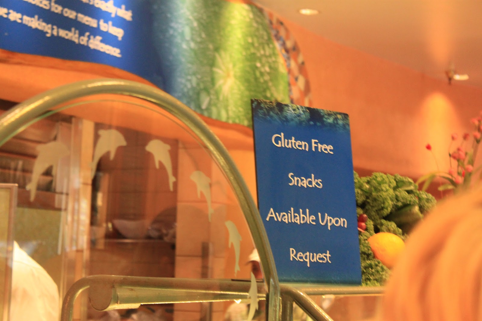 Discovery Cove and Seaworld gluten free dairy free
